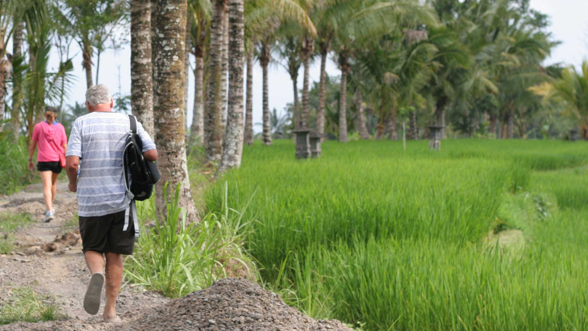 Ubud Rice Field Trekking Tour