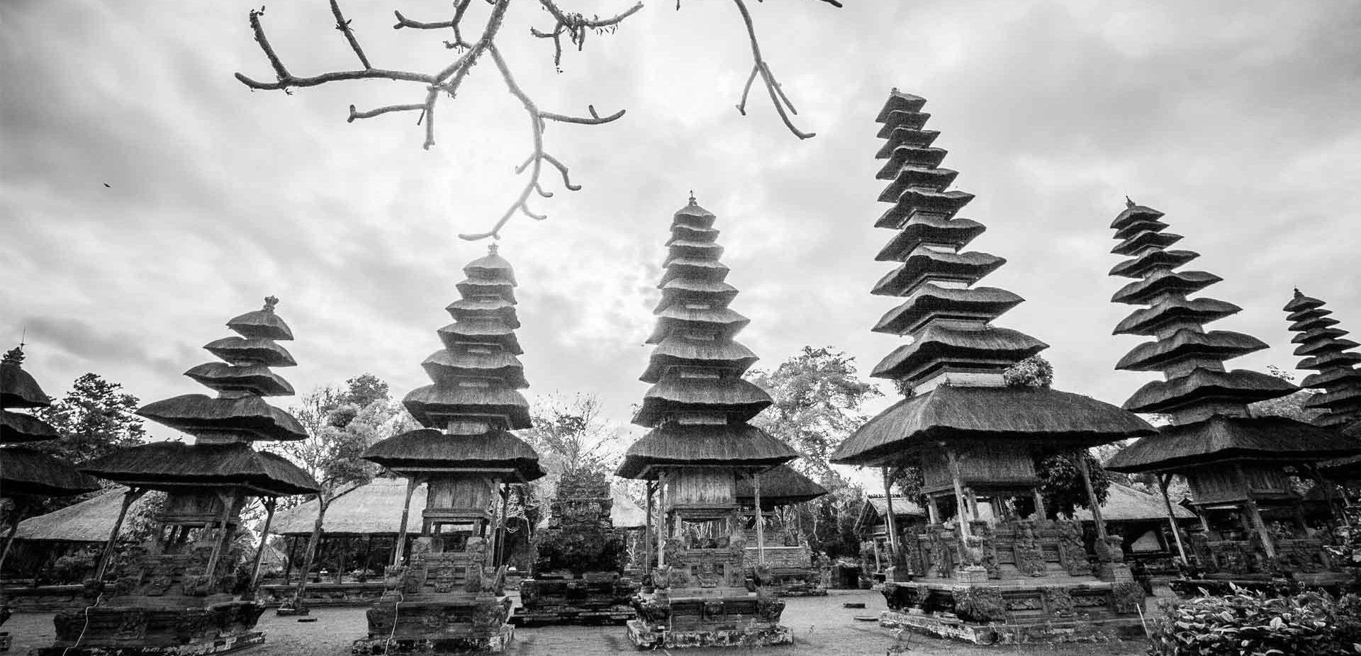 Ubud Bali Driver & Tour