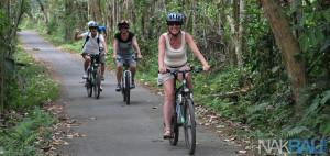 Kintamani to Ubud Cycling Tour